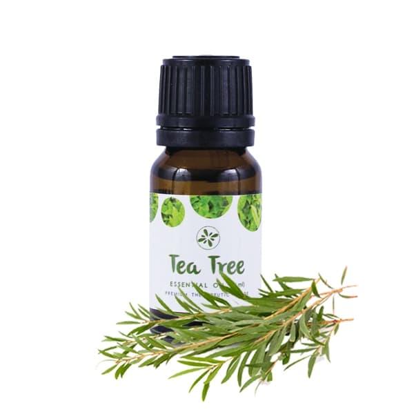 Skin Cafe 100% Natural Essential Oil - Tea Tree
